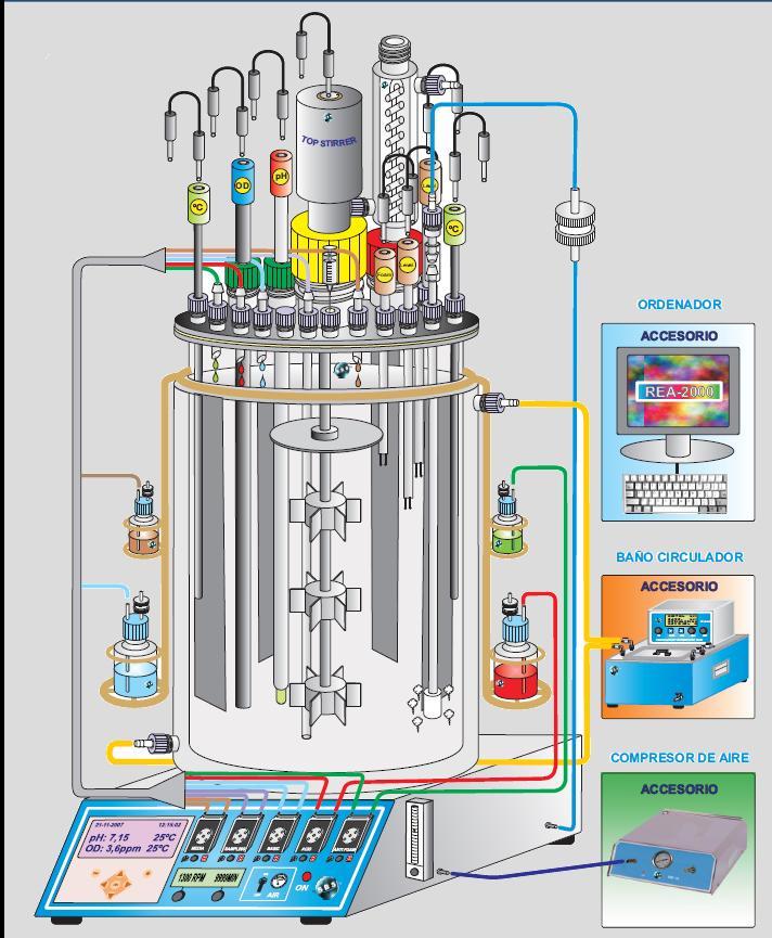Bioreactor a medida