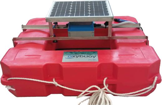 OxyBuoy Sistema de monitorización remota de oxígeno para acuicultura
